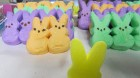 The Winner of the 2013 Peeps Bunny Joust on the Lee John Morning Show - Yellow! (all peeps photo's by Brian Papalia)
